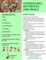Thumbnail of Caterpillars, Butterflies and Snails recipe